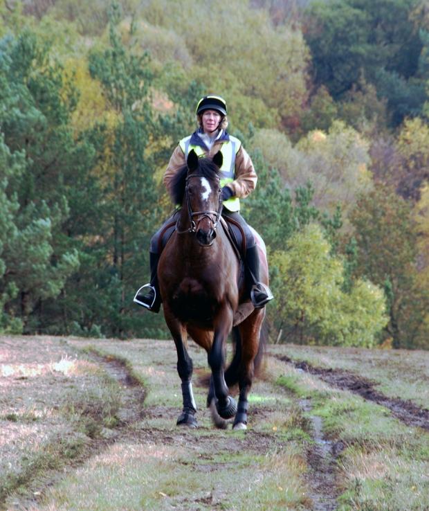 A Rider Enjoying A Autumn gallop