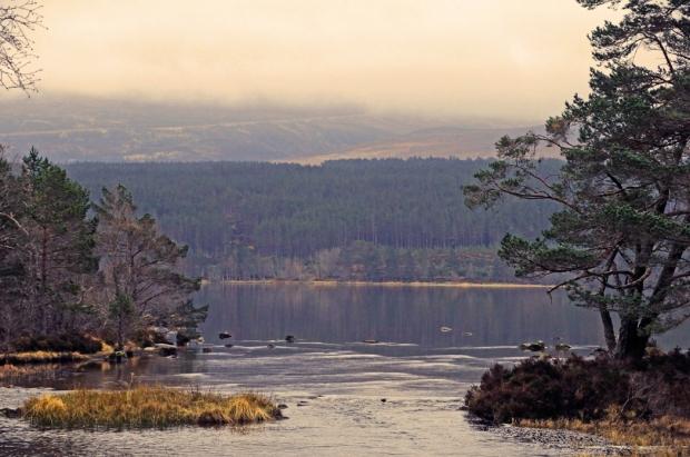 Across Loch Morlich